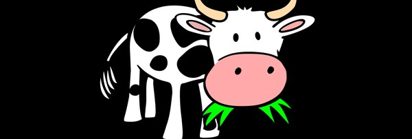 First Kill all the Sacred Cows – Then Compete Against Yourself